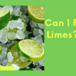 Can I Freeze Limes? Brief guide