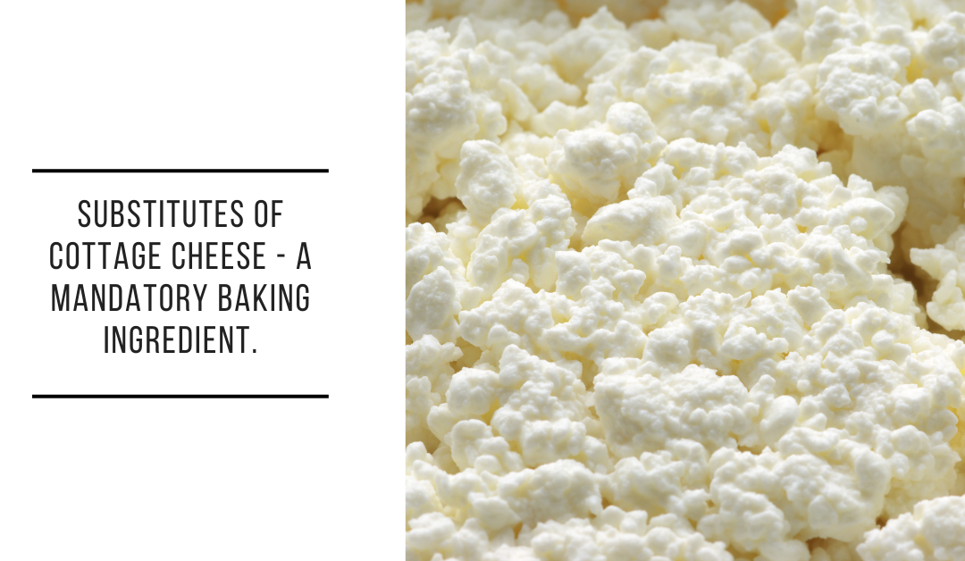 Substitutes of cottage cheese – a Mandatory Baking Ingredient.