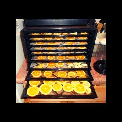 Dehydrating Oranges